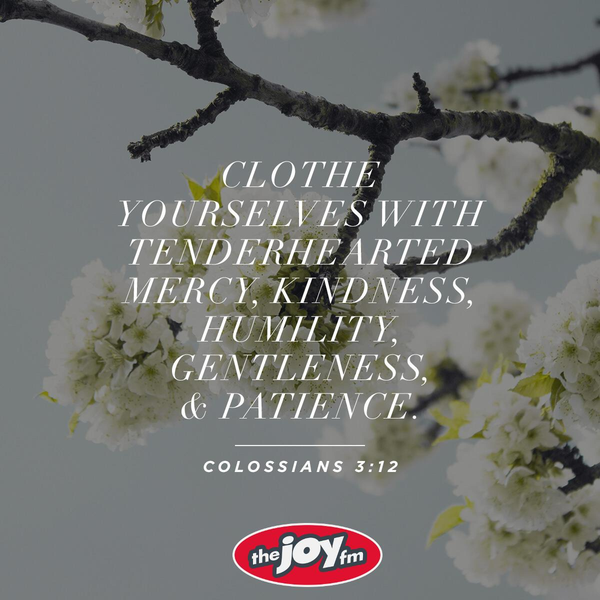 Colossians 3:12 - Verse of the Day